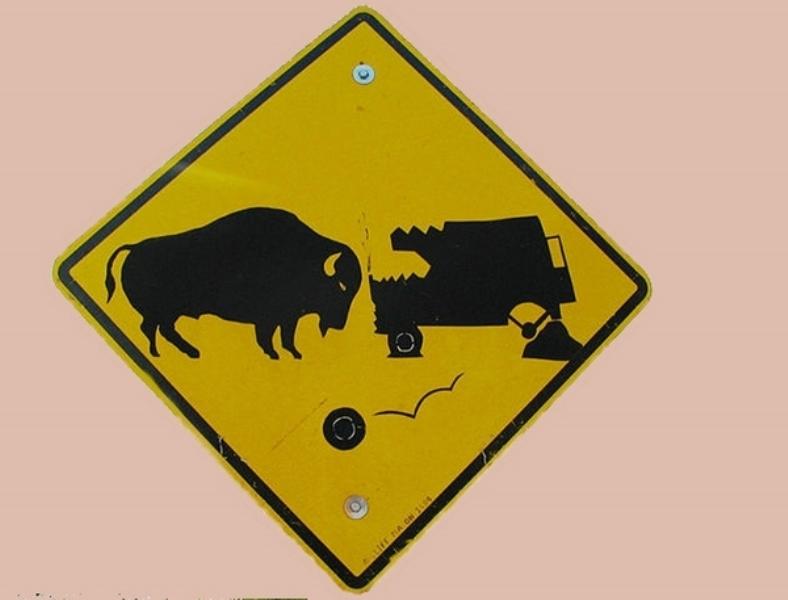 """Знак """"опасные животные"""""""