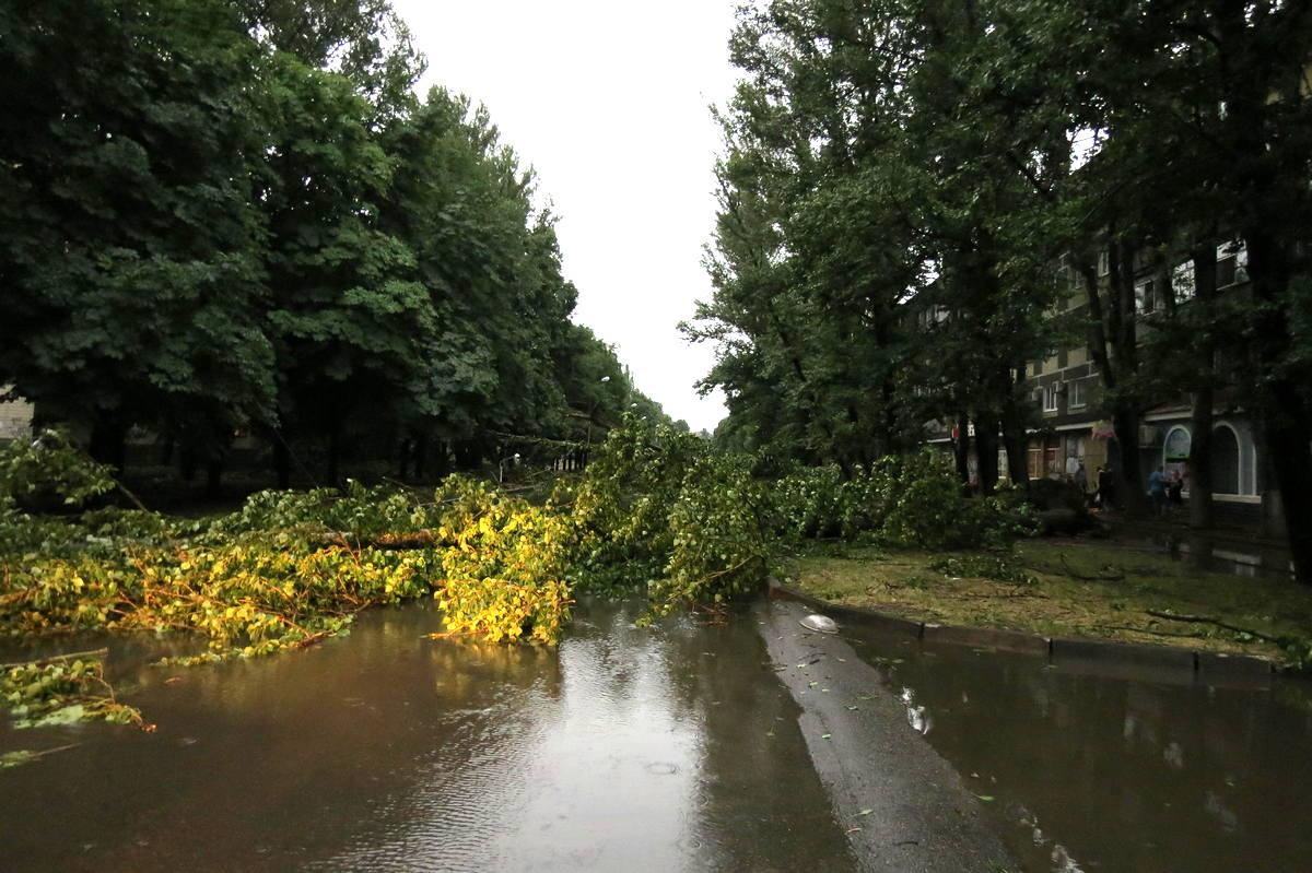 Дерево преградило путь водителям в Никополе