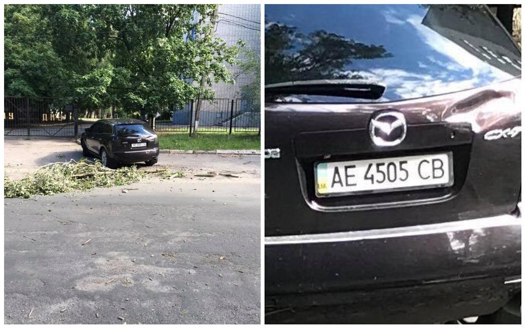 На припаркованный автомобиль упала ветка