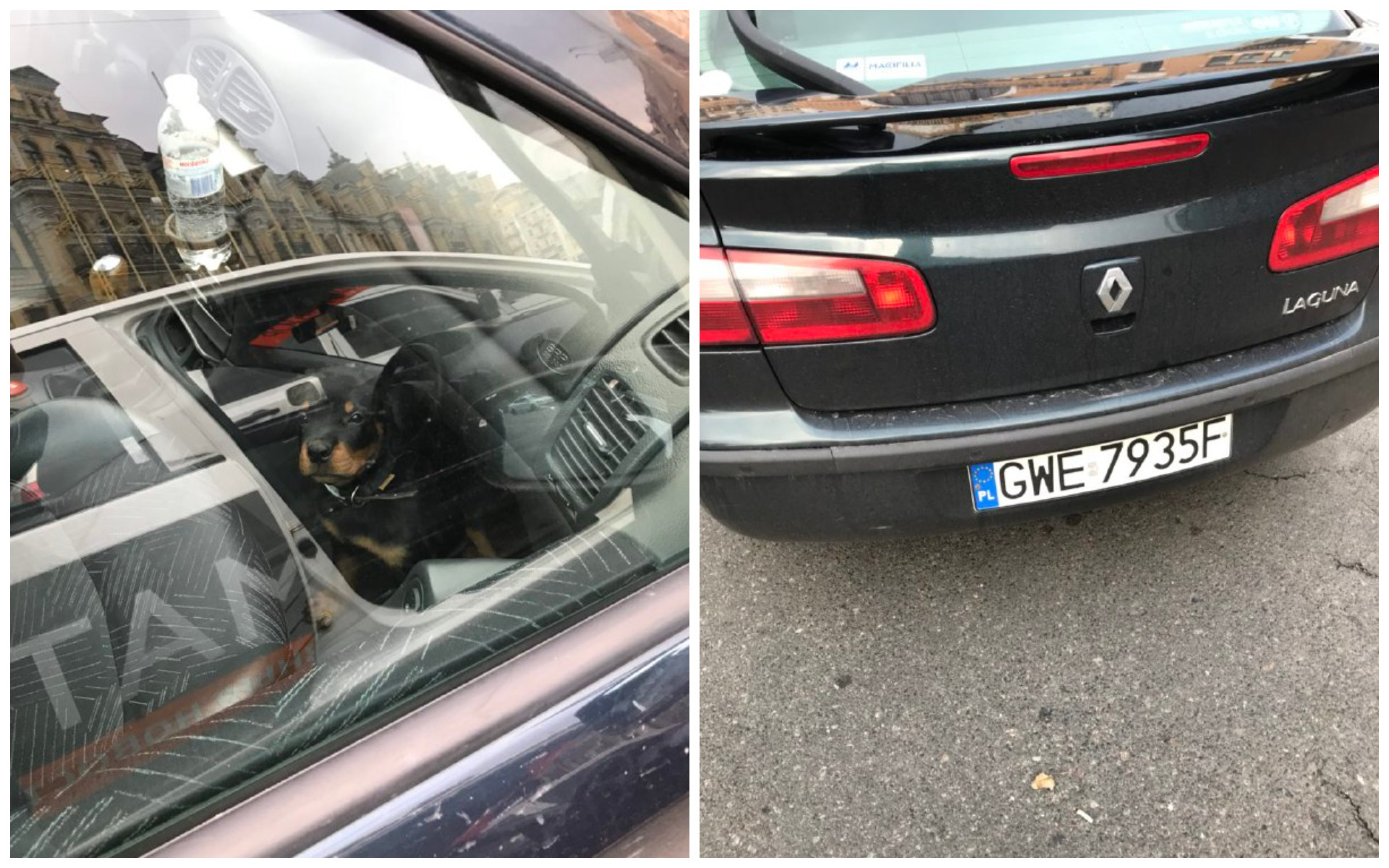 Renault Laguna с номером GWE 7935F