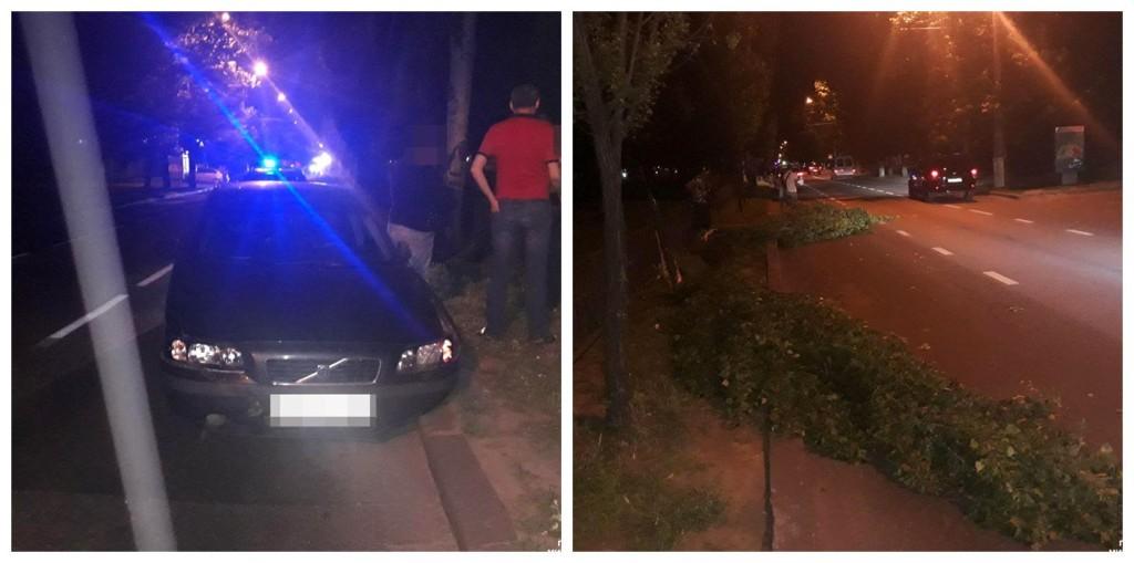 Пьяный водитель снес два тополя в Николаеве