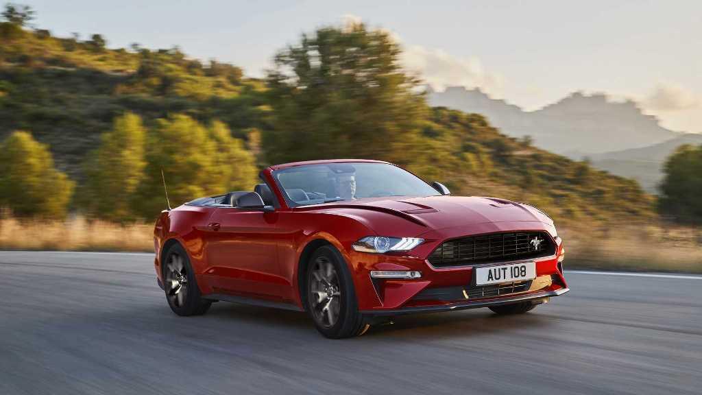 Mustang 55