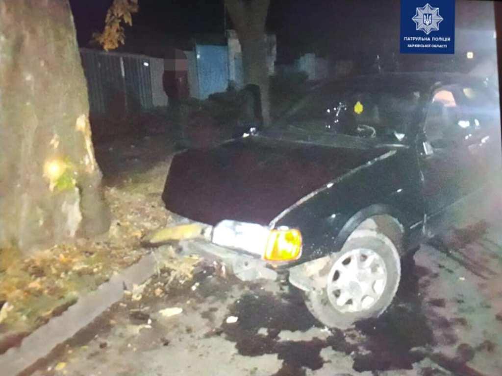 Водитель не справился с управлением и влетел в дерево